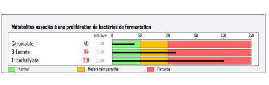 DMI fermentation